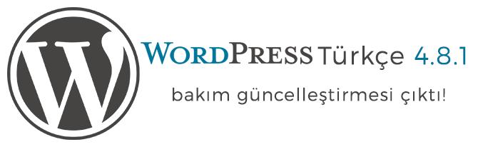 WordPress Türkçe 4.8.1